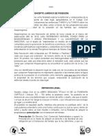Informe Juridico de Posesion