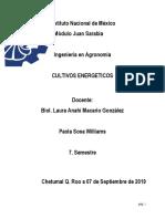 Importancia Social, Economica y Ecologica de Los Biocombustibles