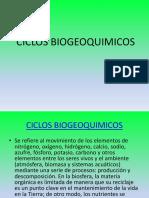 Martinez y Rojas Pedrazaciclos Biogeoquimicos