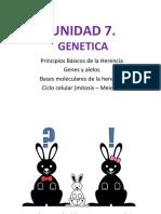Unidad 7 - Biologia General
