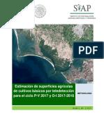 Anexo I. Metodología ESA2017.pdf