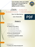 AMILASA Patricia Silva