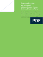 Business Process Management a Balance Between Process Efficiency and Business Agility