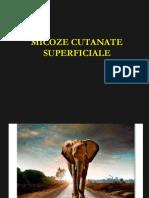 Curs 7 - Micoze Cutanate