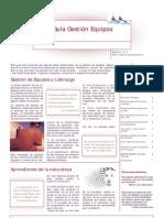 Guia_Gestion_Equipos