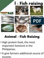animalandfishraising6-180729105611