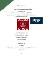 VivekRaj Report