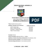Química_Informe_N11