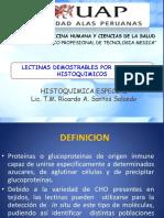 285881711-LECTINAS-UAP.pdf