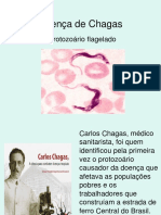 Chagas Ppt