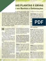 Plantas_Medicinais (2)