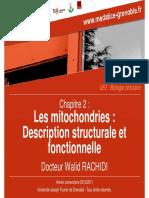 Rachidi Walid p02