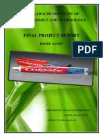 Audit Final Report.docx