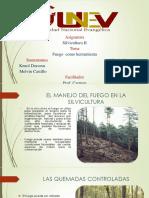 silvicultura kenol dorceus.pptx