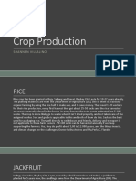 Crop Production Interview