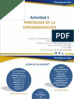 Panorama de La Experimentación