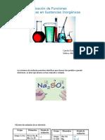 Presentaacion Funciones Inorganicas Lab
