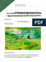 El Gran Avance Agrícola de China