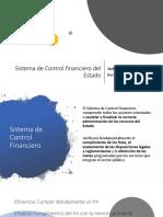 Control financiero del Estado