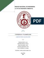 Turgencia y plasmólisis