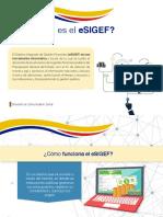 eSIGEF.pdf