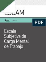 Manualcarga Mental