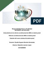 Responsabilidad_Penal_y_Punibilidad_DE-D.docx