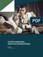 GESTÃO FINANCEIRA - ASPECTOS INTRODUTORIOS