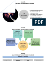 BIOLOGÍA. las neuronas y los impulsos nerviosos 8°.pptx