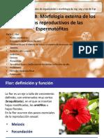 Clase 032019 Flor