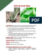 377302219-Shampoo-de-Aloe-Vera.docx