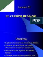Cuerpo Humano Final