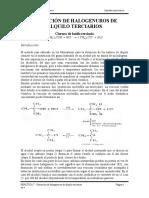 PRACTICA HALOGENUROS DE ALQUILO terciarios.doc