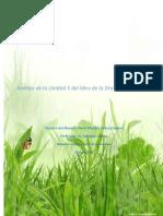 FUNECO_U5_AU_MMRR.docx