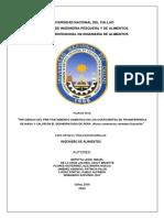 TRABAJO FINAL DE INGE 2 ULTIMA MODIFICACION.docx