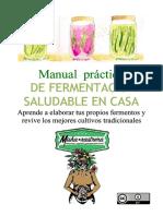 Manual práctico de fermentación saludable en casa