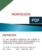 Morfología Actual
