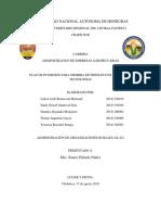 Plan de inversion cultivo de frijol Admon. de Empresas rurales 1.docx