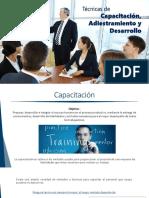 Tecnicas de capacitacion, adiestramiento y desarrollo. Desarrollo de ejecutivos