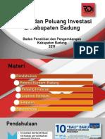 Peluang Investasi Badung 1.0