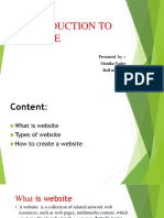 Introduction to Website (1)