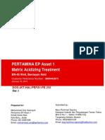 DOS Matrix Acidizing Treatment PEPA1 BN-45 DOS V1 180119