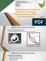 Capilares Electrolitos y Edema (2)
