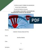 Informe 2-Genética-Mutaciones