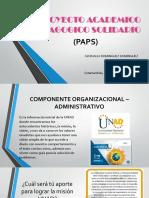 Proyecto Academico Pedagogico Solidario