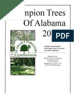 Champion Trees (1)