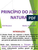 Principio Do Juiz Natural