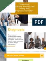 Organizational Change & Development