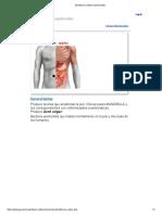 Estafilococo Albus (Epidermidis)