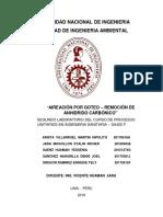 Informe 2 de Co2 en PDF